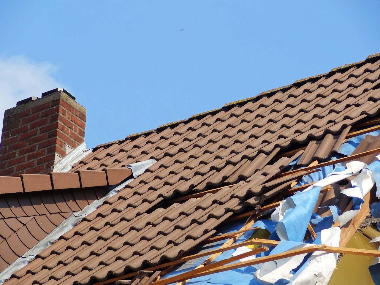Welche Dachbedeckung wird zukünftig an Relevanz gewinnen?