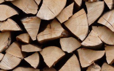 Brennholz: Worauf Sie beim Kauf achten sollten