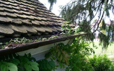 Dachrinnenreinigung – So geht's schnell und sicher