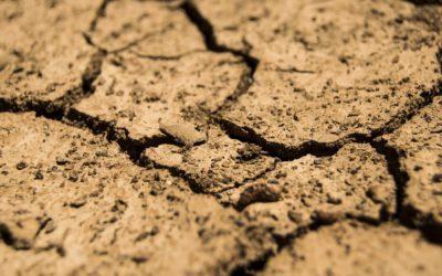 Bodenprüfung – Ein tiefergehender Blick lohnt sich