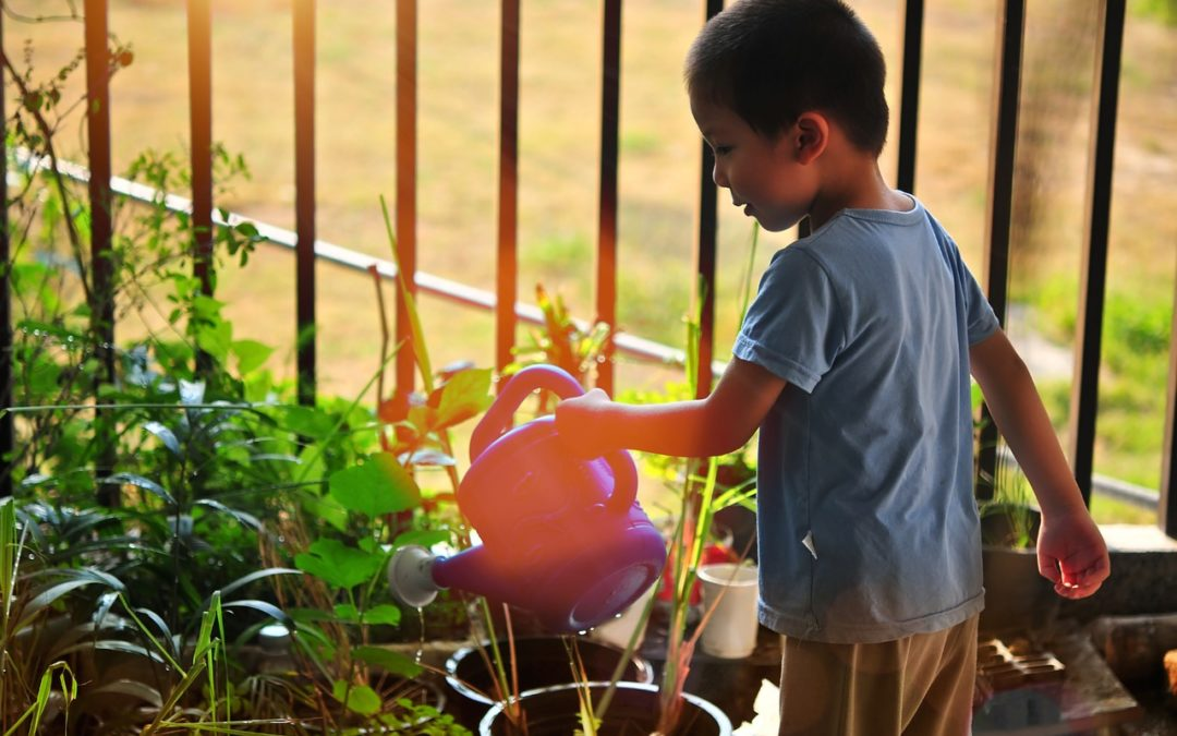 Gartenpflege im Frühling