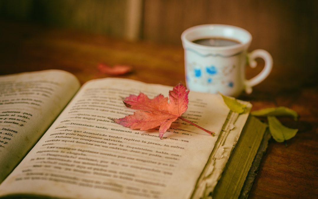 Vitrinen als Bücherregal nutzen